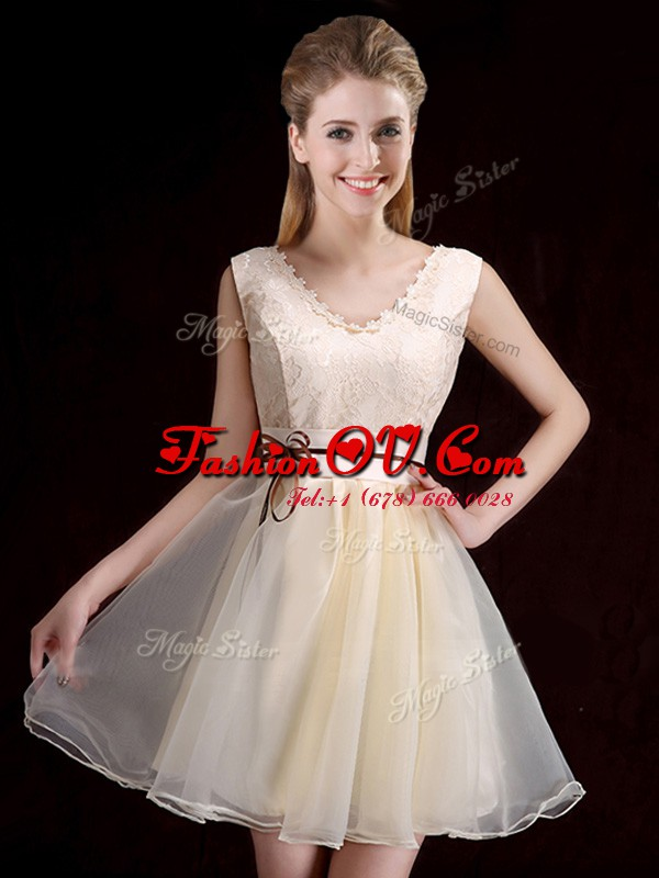 V-neck Sleeveless Organza Dama Dress Lace and Appliques and Belt Lace Up