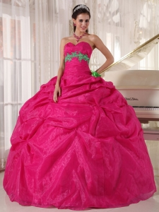 Hot Pink Sweetheart Quinceanera Dress with Green Appliques