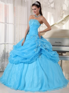 Baby Blue Ball Gown Strapless Floor-length Organza Appliques