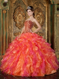 Multi-Color Ball Gown Strapless Organza Beading and Ruffles