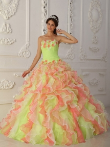 Multi-Color Ball Gown Strapless Organza Hand Flowers Ruffles