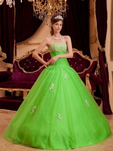 Spring Green Quinceanera Dress Strapless Floor-length Appliques