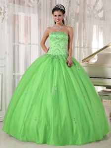 Spring Green Quinceanera Dress Strapless Taffeta and Tulle