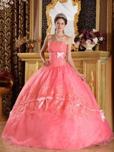 Watermelon Quinceanera Dress Strapless Appliques Organza