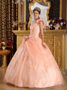 One Shoulder Quinceanera Dress Light Pink Appliques