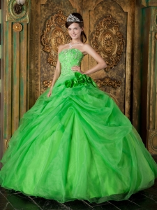 Ball Gown Beading Spring Green Quinceanera Dress Organza