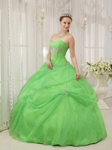 Spring Green Quinceanera Dress Ball Gown Organza Appliques