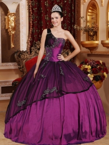 One Shoulder Beading and Appliques Quinceanera Dress Organza Overlay