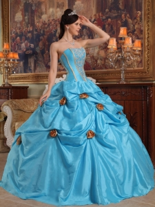 Baby Blue Pick Ups Beading and 3D Flowers Quinceanera Gown