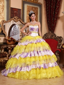 Multi-color Sweetheart Organza Beading and Ruffles Sweet 15 Dress