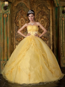 Yellow Quinceanera Dress Ball Gown Appliques Organza