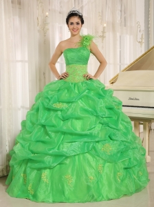 One Shoulder Hand Flowers Quinceaners Dresses Spring Green