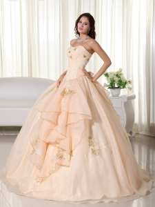 Embroidery Champagne Ball Gown Dress for Quinceaneras