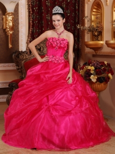 Organza Appliques Quinceanera Dress Hot Pink Ball Gown