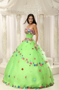 Colorful Flowers Spring Green Appliques Quninceaera Gown