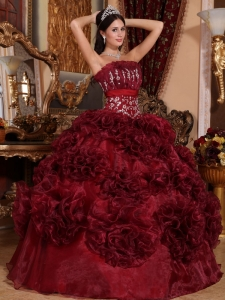Organza Quinceanera Dresses Burgundy Ball Gown Appliques