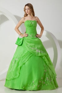 Ball Gown Sweet 16th Dress Spring Green Strapless Embroidery