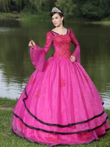 Long Sleeves Fuchsia Quinceanera Dress Organza Appliques