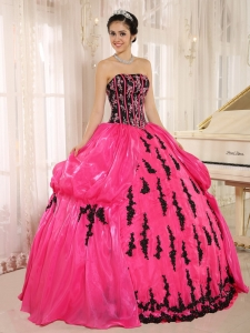 Hot Pink Skirt Black Embroidery Quinceanera Ball Gown Dress
