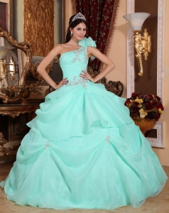 Apple Green Ball Gown One Shoulder Organza Quinceanera Dress