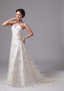 Light V-neck Lace Chapel Train Wedding Dress Appliques