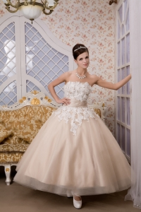 Ankle-length Champagne Tulle Wedding Dress Appliques