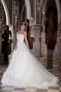 Sweetheart Court Train Organza Feather Wedding Dress