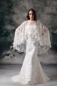 Lace Wedding Dress Column Sweetheart Brush Train