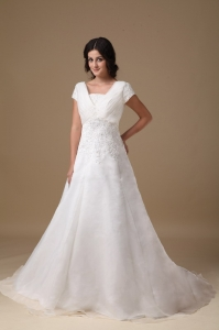 V-neck Short Sleeves Court Train Appliques Wedding Dress