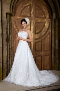 Embroidery Bridal Gown Organza A-line Court Train with Sash