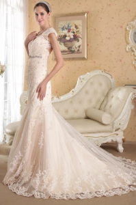 Champagne Mermaid V-neck Lace Wedding Dresses Beading