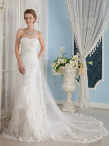 Chapel Train Appliques Wedding Dress for Brides Tulle