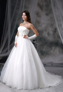 Bowknot Appliques Brush Train Organza Wedding Dress