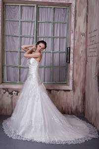 Wedding Dress Lace Embroidery Strapless Chapel Train