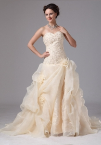 Champagne Embroidery Wedding Dress Hand Made Flowers