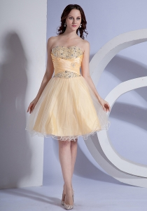 Light Yellow A-line Taffeta and Organza Prom Dress Beading Bodice