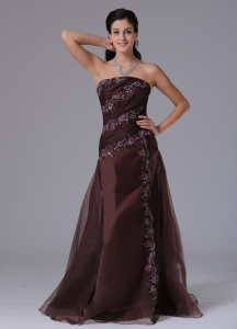 Brown Column Appliques Prom Celebity Dress