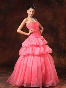 Watermelon Appliques Strapless Organza Prom Gowns