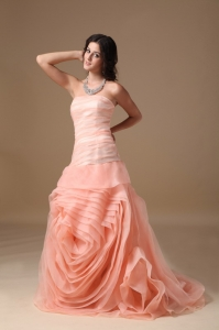 Strapless Brush Train Organza Hand Made Flower Prom Dress