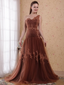 Brown One Shoulder Tulle Prom/Pageant Dress with Appliques