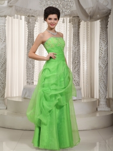 Appliques Green Prom / Evening Dress Strapless Organza