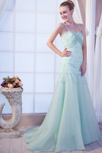 Brush Organza Appliques Prom Dress Apple Green Straps