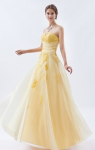Champagne Embroidery Prom Dress Organza Sweetheart