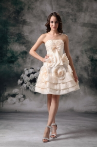 Champagne Mini Organza Prom/Homecoming Dress Hand Made Flowers
