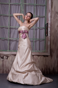 Champagne Bridesmaid Dress Strapless Brush Train Belt Beading Satin