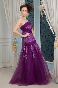 Elegant Purple Tulle with Embroidery Prom Evening Dress