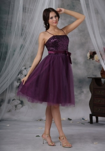 Purple Spaghetti Knee-length Dama Dresses for Quinces