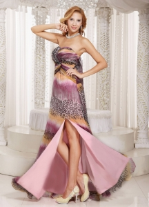 Multi-color Printing Watteau Train Prom Celebrity Dress