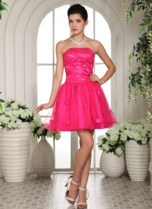 Homecoming Dress Appliques Beading Mini-length Hot Pink