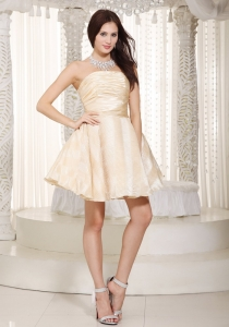 Ruched Cocktail Holiday Dress Mini-length Champagne